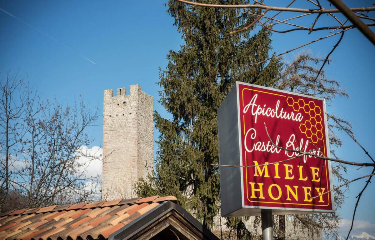 Video presentazione Apicoltura Castel Belfort