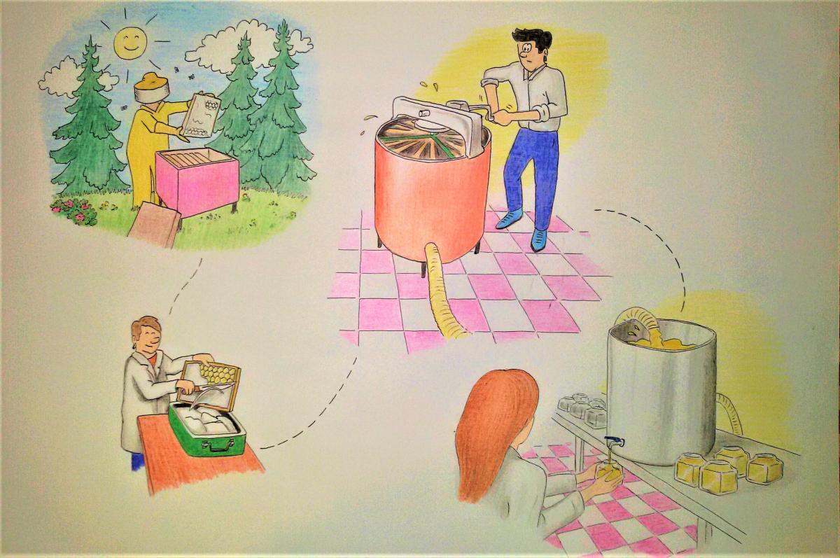 La produzione del miele