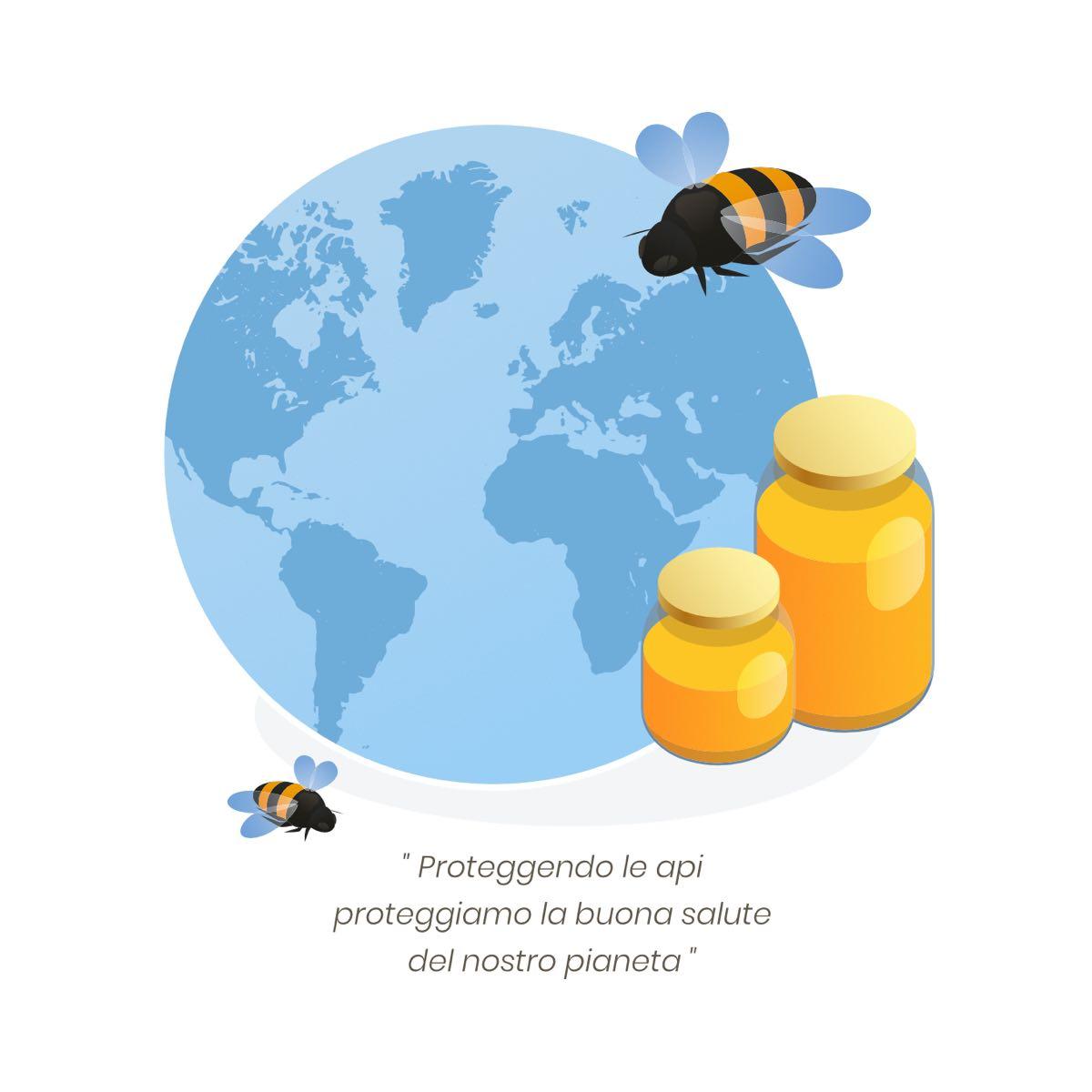 il mondo delle api